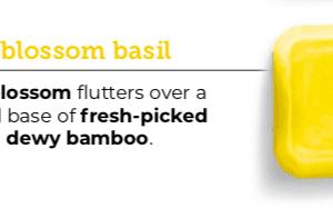 Lemon Blossom Basil Scentsy Wax Bar