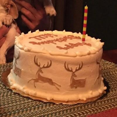 Wickstead's-Eat-Me-Customer-Photo-of-our-Medium-Deer-on-a-buttercream-cake