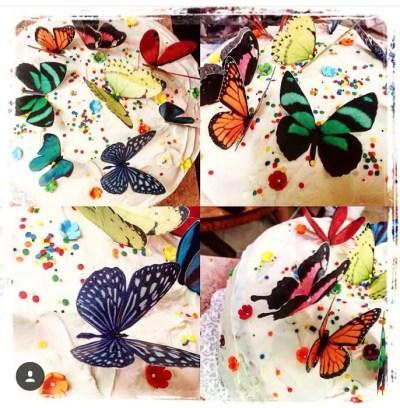 Wickstead's Eat Me Edible Double Sided Butterflies