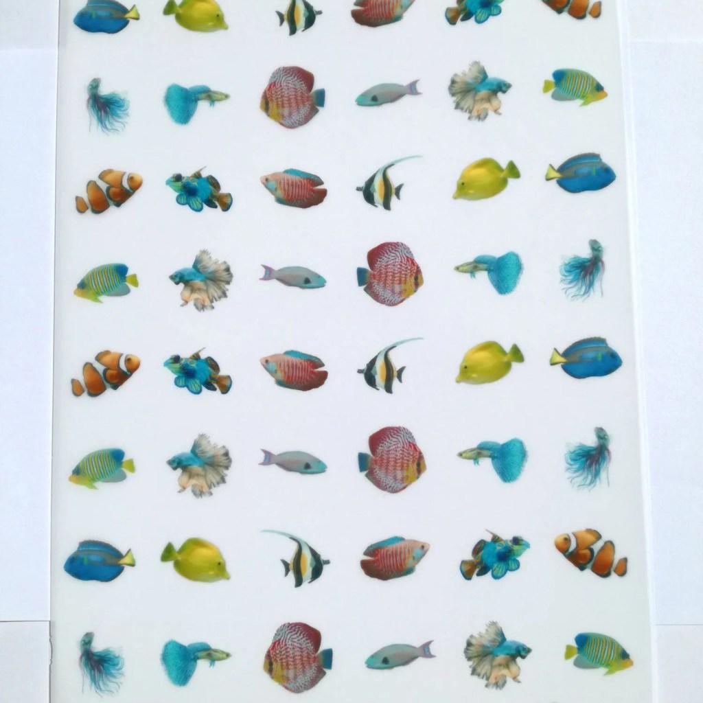 Wickstead's-Eat-Me-Edible-Meringue-Transfer-Sheets–Tropical-Fish-(48-x-Mini)-(1)