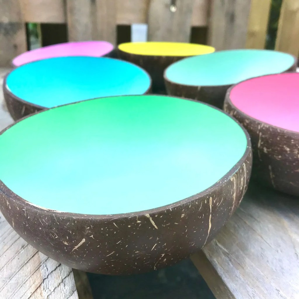 Wickstead's-Fair-Trade-Eco-Friendly-Metallic-&-Pastel-Coconut-Bowls—27