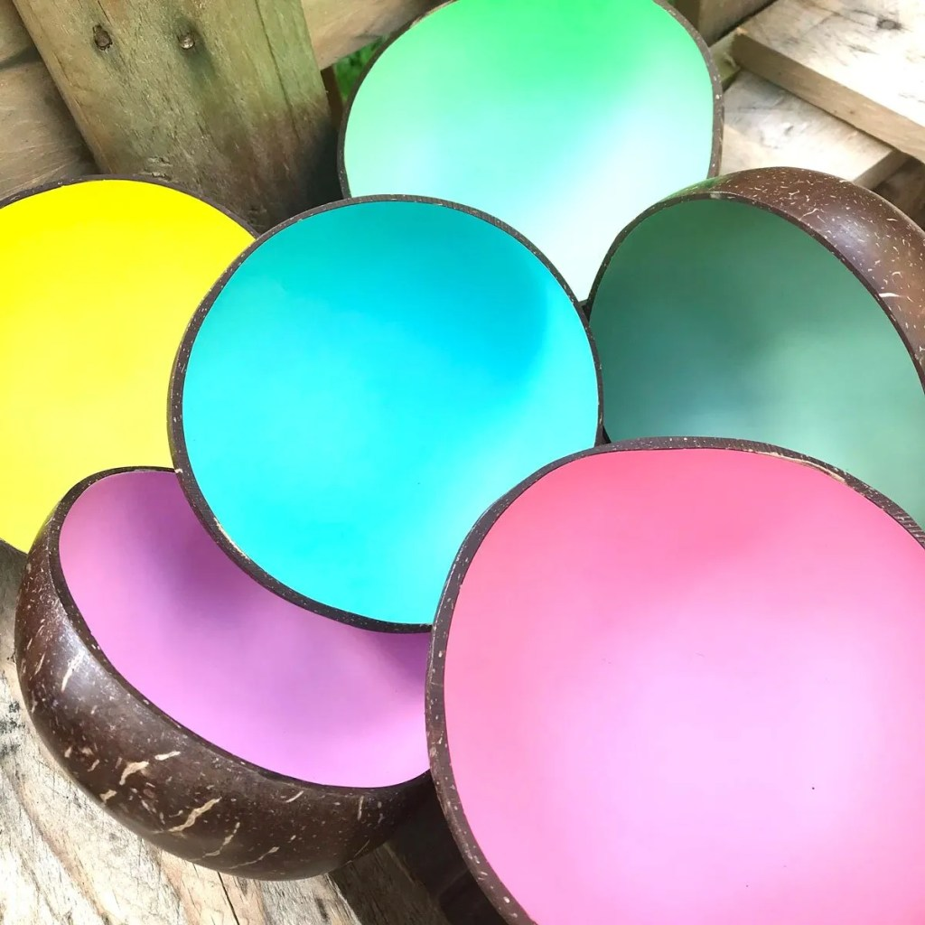 Wickstead's-Fair-Trade-Eco-Friendly-Metallic-&-Pastel-Coconut-Bowls—28