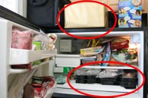 Bistro MD in Freezer