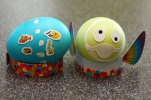 PAAS Egg-Quarium