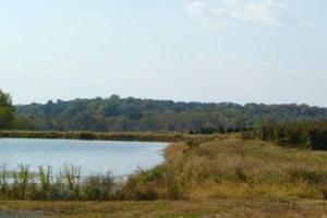 Homestead Farm View