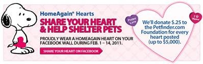 HomeAgain Hearts
