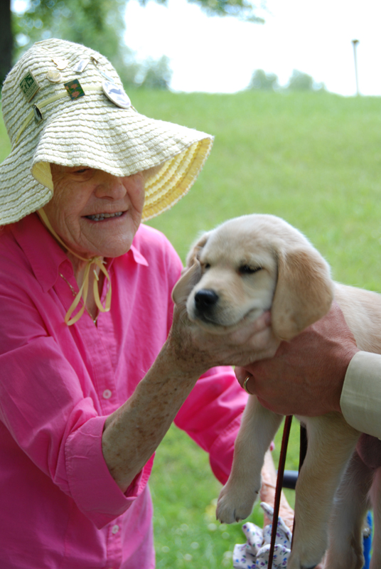 A guest enjoys interacting with a puppy