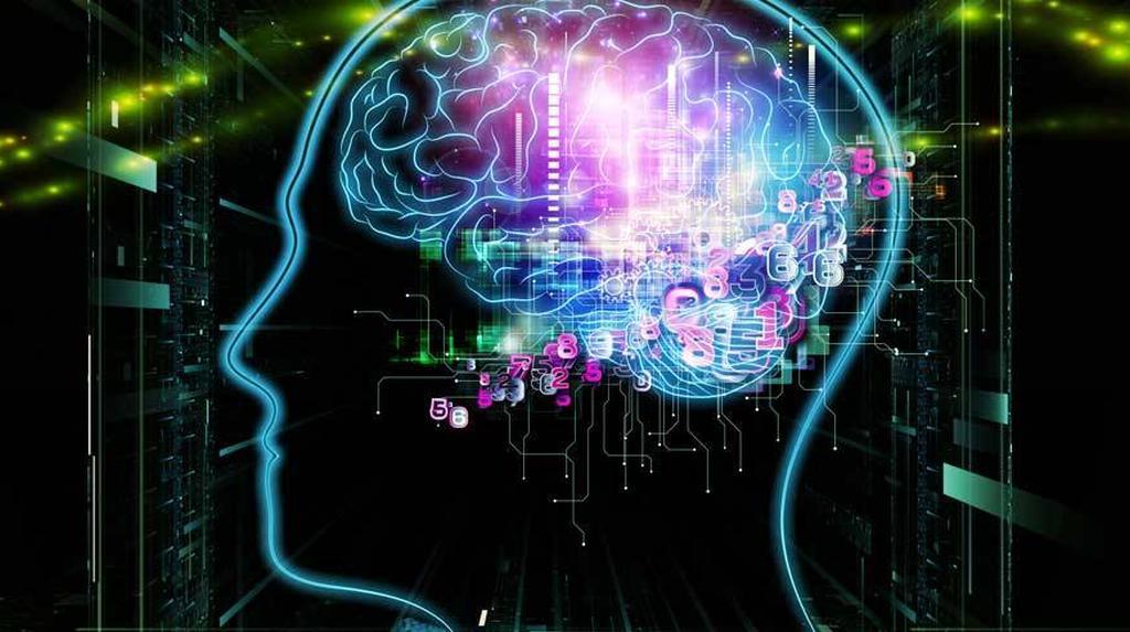 Die Kognitive Psychologie  Wiefunktioniertcom