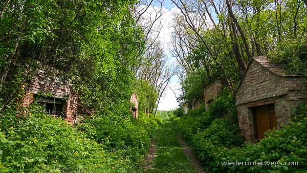 Wonneviertel Weinviertel Mai 2015 (27 von 39)