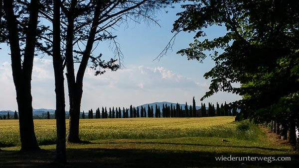 Toskana Juni 2015 (19 von 33)