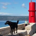 Camping mit Hund auf Cres und Mali Losinj