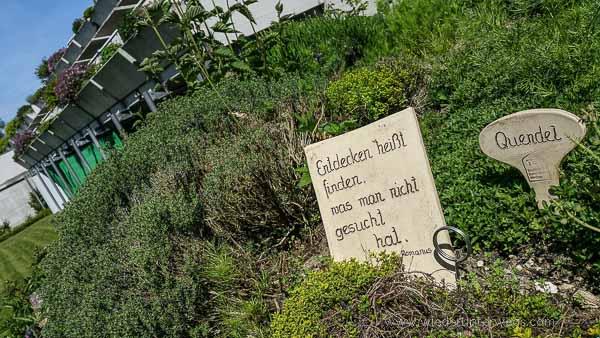 Bad Kreuzen_TEM_Marienschwestern_Mai2016_WEB (49 von 84)
