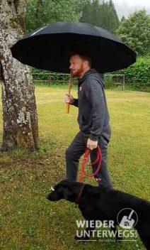 Camping im Regen: Hund nass, alles nass am Tristachersee.