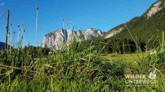 Camping Österreich Web 2017 (953 von 973)