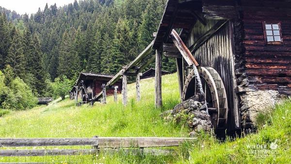 Kärnten_Reiseblogger_SlowFood_Mai2016_web (38 von 206)