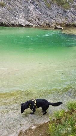 Lunzer See Ybbs Camping_Web (45 von 171)