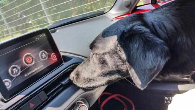 MazdaMX5_WienerAlpen_web_Juli2016 (8 von 113)