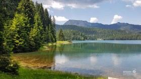Montenegro Tipps Nationalparks_WEB (173 von 342)
