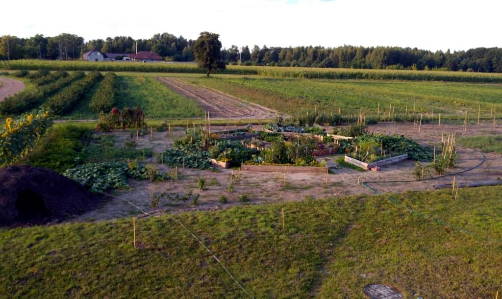 Grządki podwyższone - skrzynie na warzywa, skrzynie pod uprawę warzyw, skrzynie na warzywa, podniesione grządki