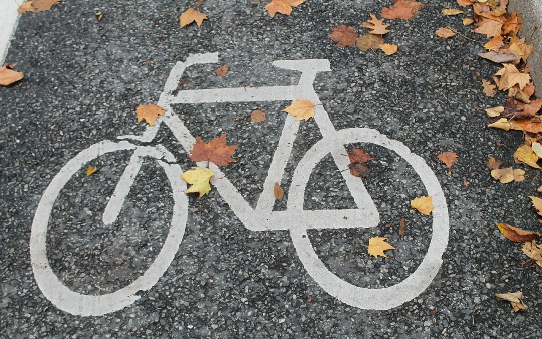Herfstride 2017 Ride of the falling leaves