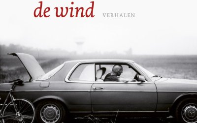 Kop in de wind – Wilfried de Jong