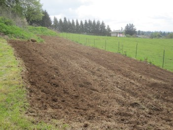 Freshly plowed garden plot, preparing new soil for garden