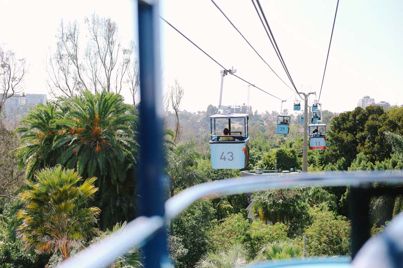 cable car at San Diego Zoo