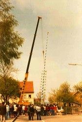 Der Kran stellt den Maibaum auf