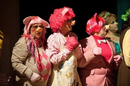 hree Little Pigs pink wig