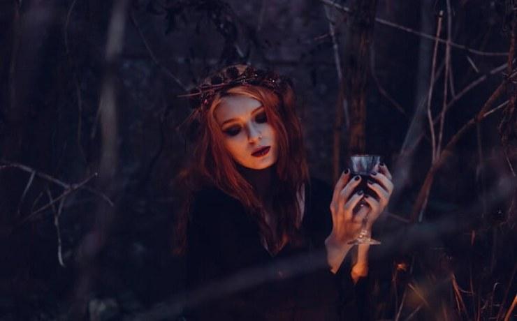 Halloween Costume Wigs