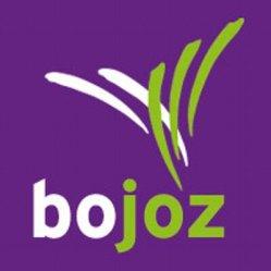 BOOZ_WEBicon_400x400