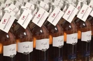 cielo pinot grigio rose wijnenwereld