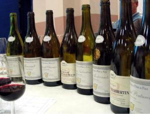 2006-01 Cotes de Beaune Mazilly FI