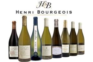 2007-10 Sancerre Henri Bourgeois FI
