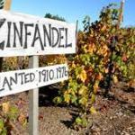 04-02-2012 : Zinfandel