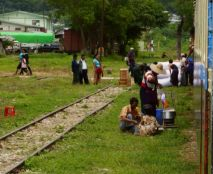 Trein stopt op platteland.
