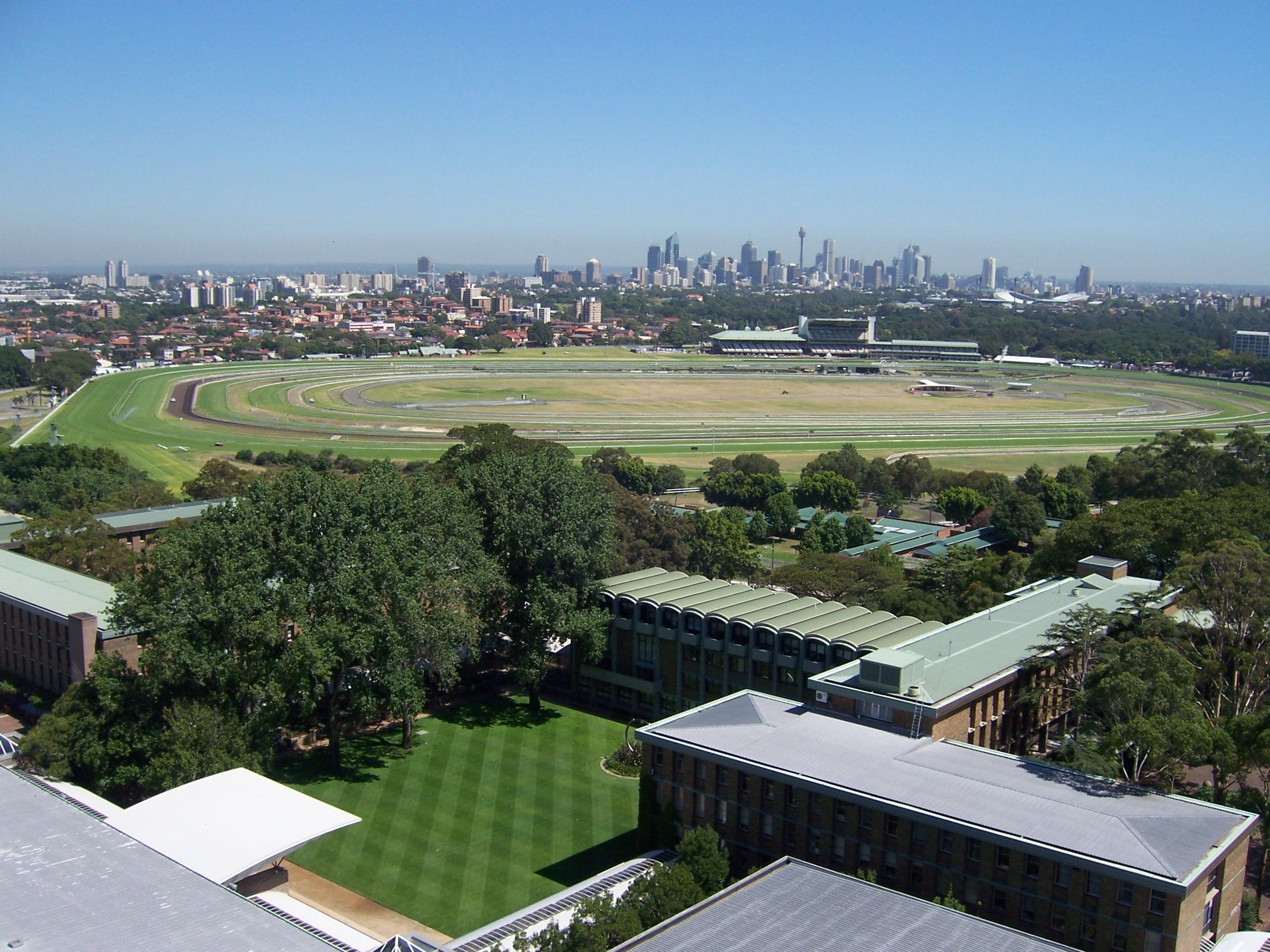 University of New South Wales  wikidoc