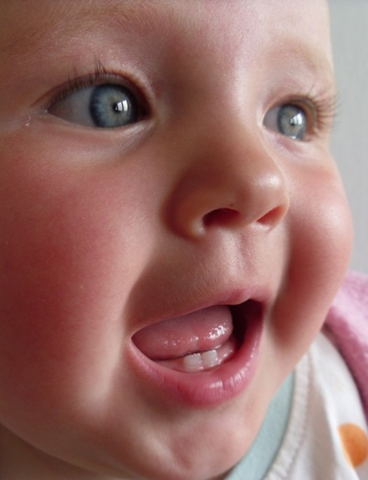 Primary lower central incisors in baby