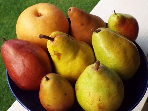 Assortment of pear varieties