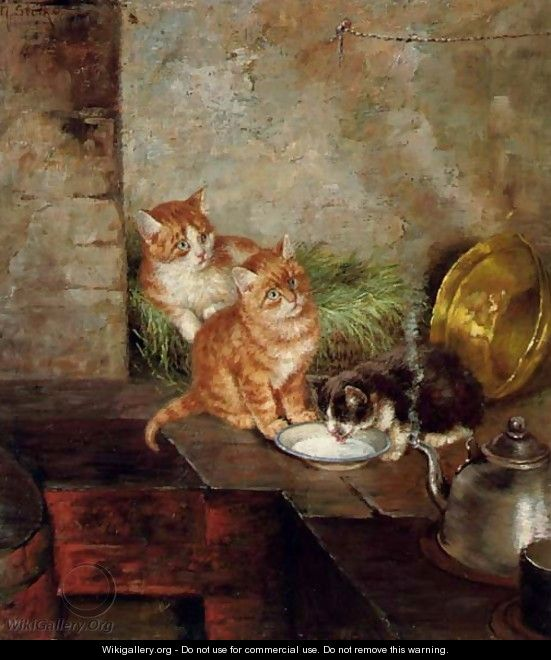 cats in the kitchen shelf liner three minna stocks wikigallery org click here to download image