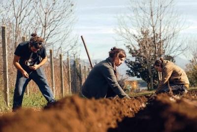 WIKI HOSTEL FAMILY pantasema autumn workers