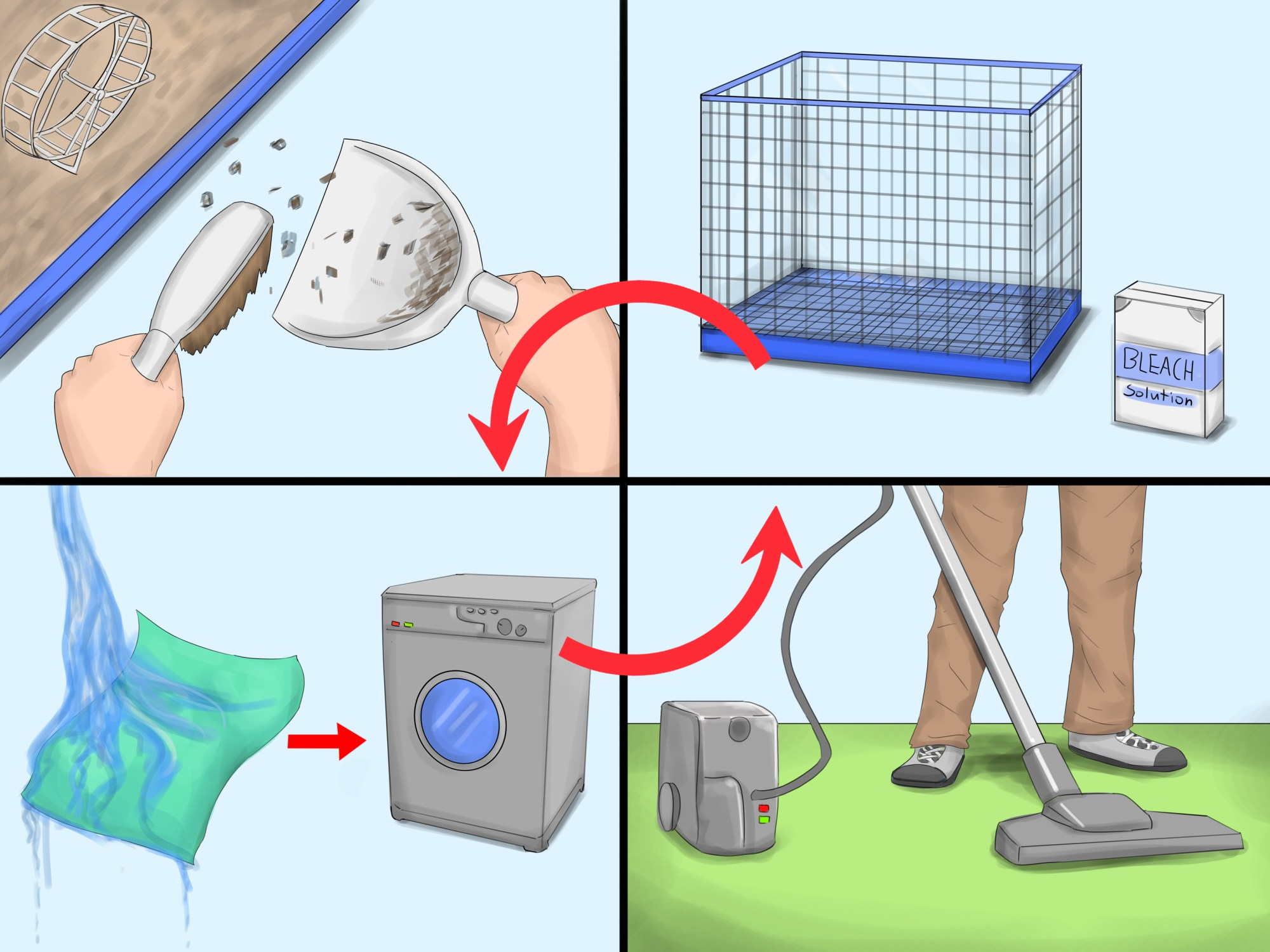 hight resolution of how to get rid of tropical rat mites on pet rats