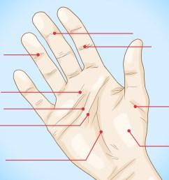 palm reading diagram [ 3300 x 2400 Pixel ]