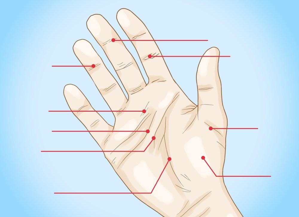 medium resolution of palm reading diagram