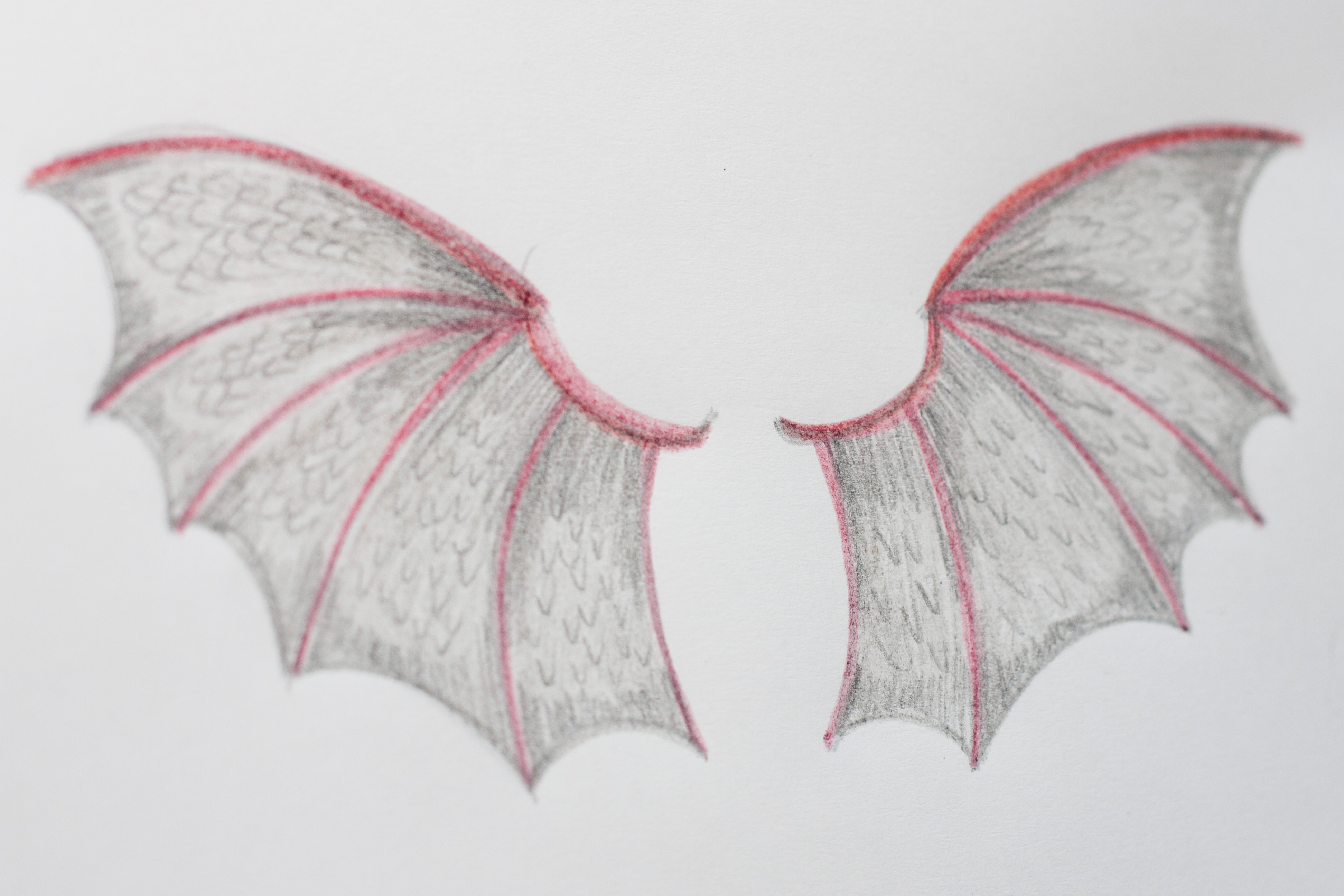 Easy How Draw Demon Wings
