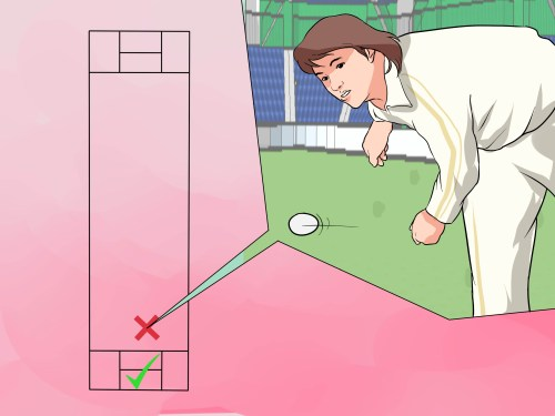 small resolution of how to understand the basic rules of cricket
