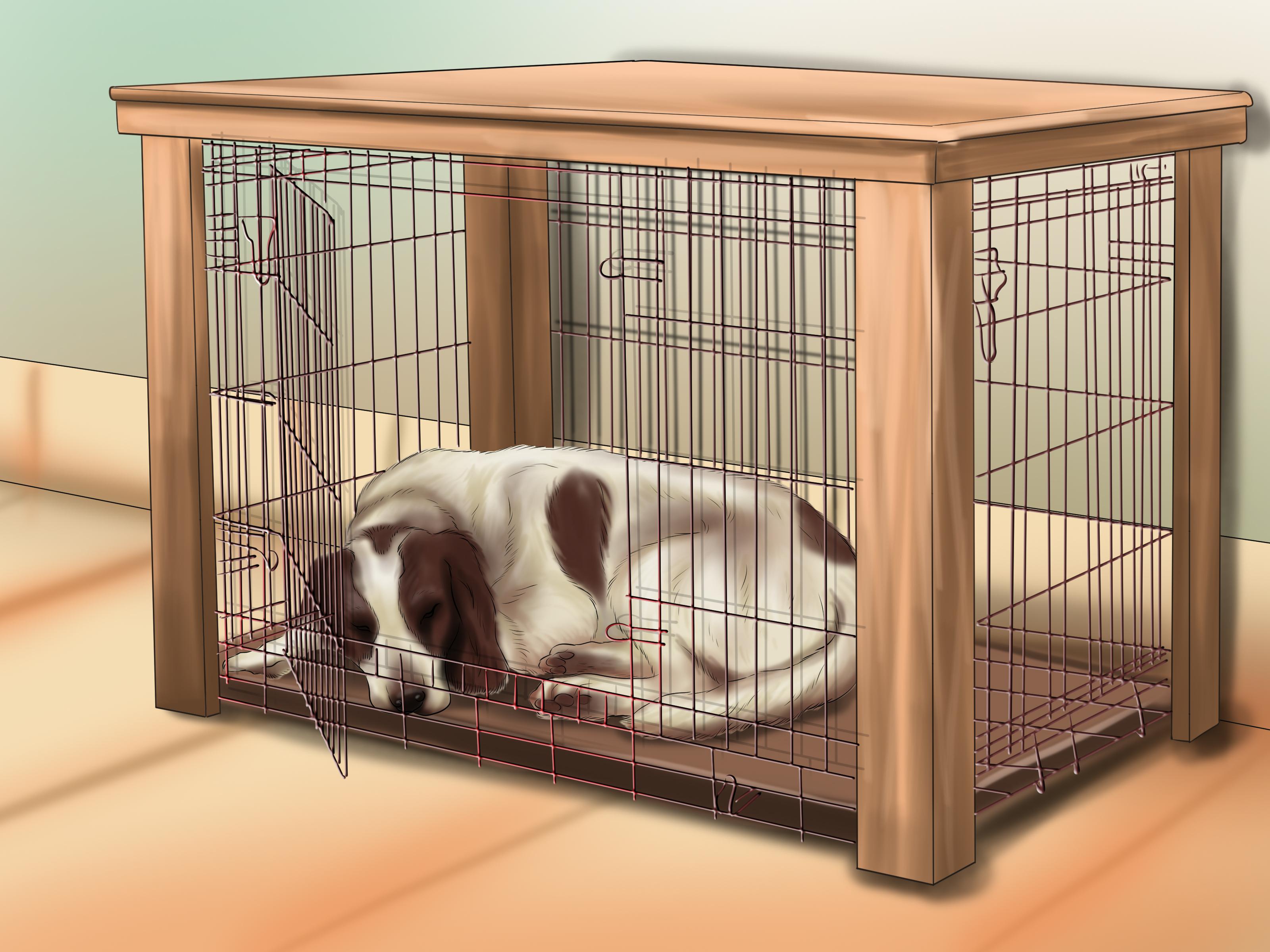 Je hond rustig leren slapen  wikiHow