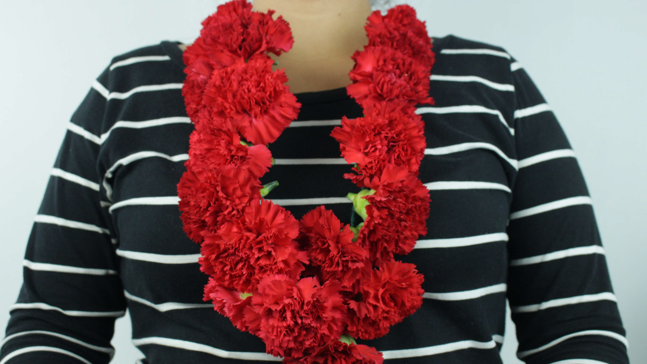 How to Make a Carnation Lei 14 Steps with Pictures