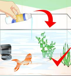 how to revive a goldfish [ 3200 x 2400 Pixel ]