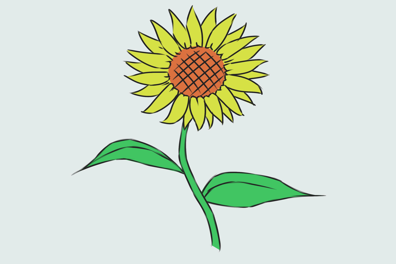 Comment dessiner une fleur 18 tapes avec des photos